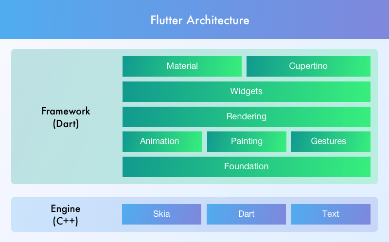 Flutter vs  React Native: A Side by Side Comparison