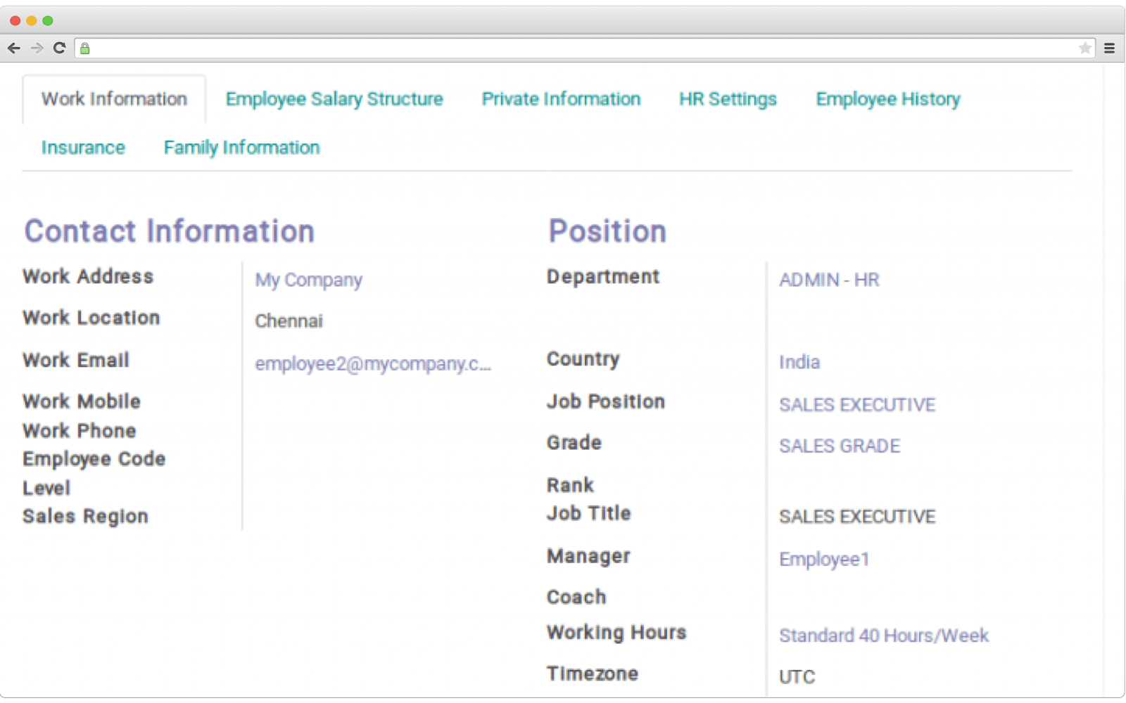 How employee profiles look like in ERP