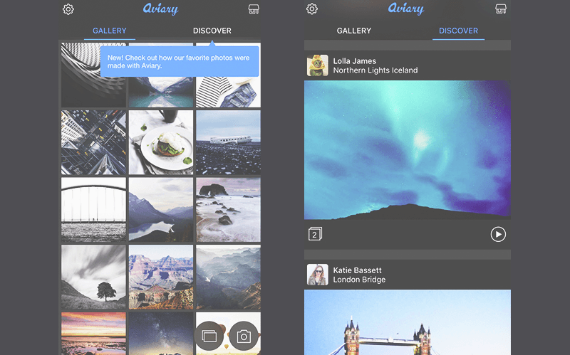 How much does it cost to develop an app like aviary discover