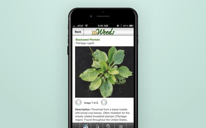 ID Weeds App