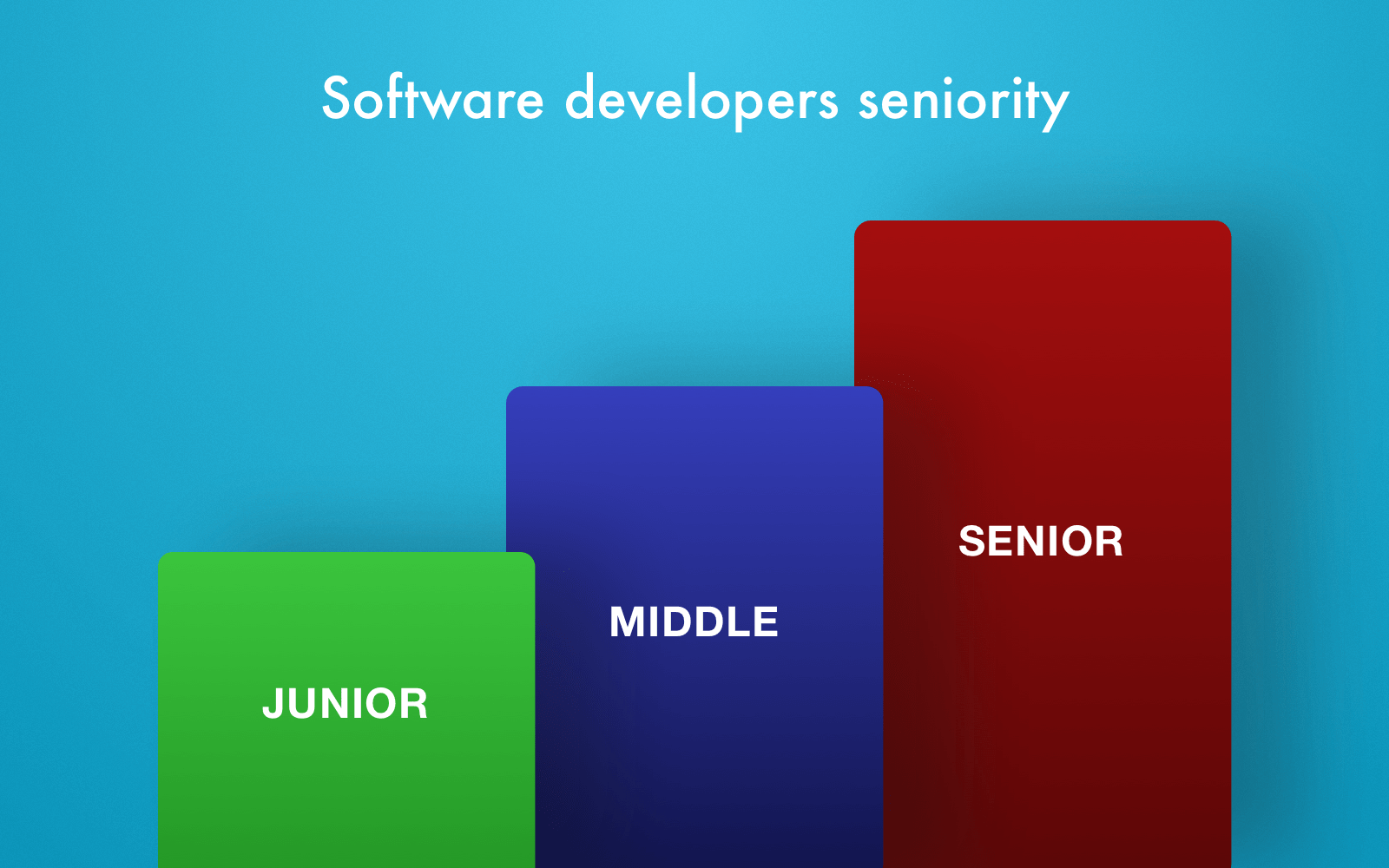 Software dev seniority