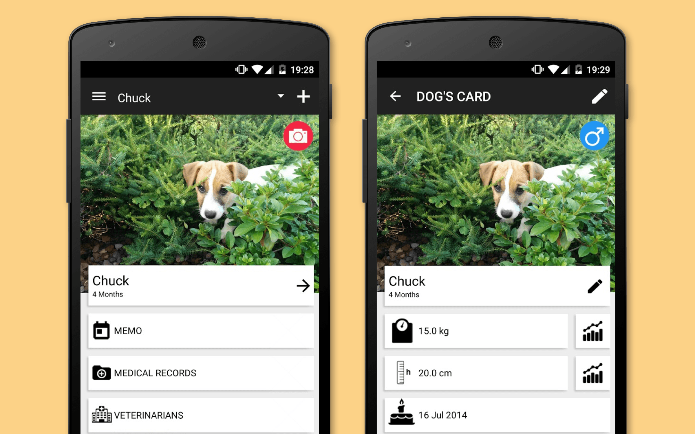 pet medical records app