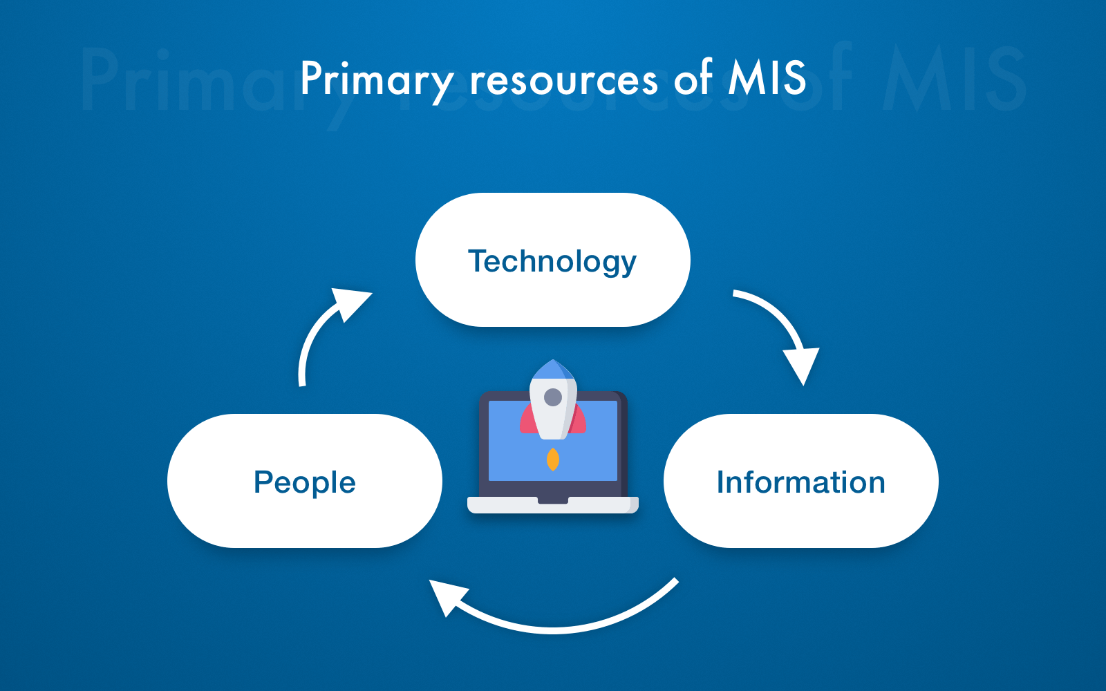 MIS software primary resources concept